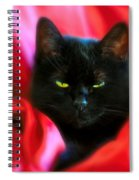 Devil In A Red Dress Spiral Notebook