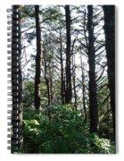 Devil's Churn 7 Spiral Notebook