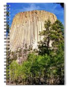 Devil's Tower Through The Trees Spiral Notebook