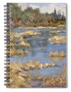 Devon Bog Oil Spiral Notebook