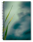 Dew Drop Spiral Notebook