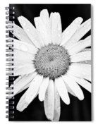 Dew Drop Daisy Spiral Notebook