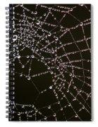Dew Drops On Spider Web 4 Spiral Notebook