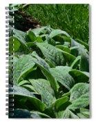 Dew Kissed Foliage Spiral Notebook