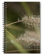Dew On Ornamental Grass No. 1 Spiral Notebook