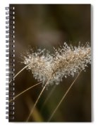 Dew On Ornamental Grass No. 2 Spiral Notebook