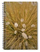 Dew On Ornamental Grass No. 3 Spiral Notebook