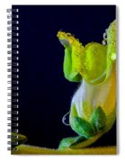 Dew On The Dragon Spiral Notebook