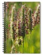 Dew On The Grass Spiral Notebook