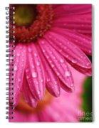 Dewdrop Daisy Spiral Notebook