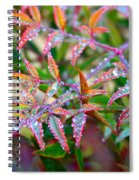 Dewdrops Spiral Notebook