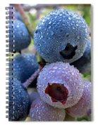 Dewy Blueberries Spiral Notebook