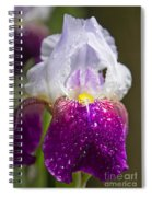 Dewy Iris Spiral Notebook