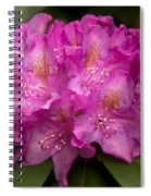 Dewy Rhododendron Spiral Notebook