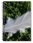 Dewy Swan Feather Spiral Notebook
