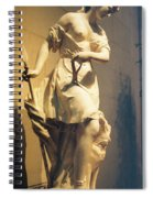 Diana Goddess Of The Hunt Spiral Notebook