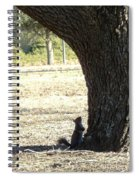 Did You Bring The Ladder? Spiral Notebook