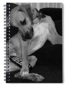 Diesel In Black And White Spiral Notebook