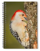 Diggin Spiral Notebook