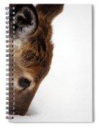Digging Spiral Notebook