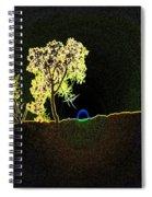 Digital Sunset Spiral Notebook