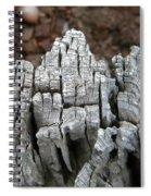Digital Trunk Spiral Notebook