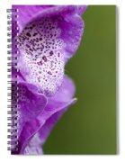Digitalis Abstract Spiral Notebook