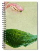 dim colours II Spiral Notebook