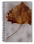 Dimples Spiral Notebook