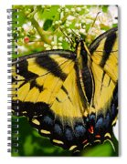 Dinner For The Swallowtail Spiral Notebook