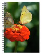 Dinner Table For Two Butterflies Spiral Notebook