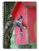 Dinner Time Spiral Notebook