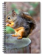 Dinner Time Spiral Notebook