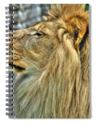 Dinner Time...can't You Smell It...lazy Boy At The Buffalo Zoo Spiral Notebook