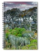 Dinosaur Trees Spiral Notebook