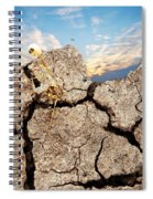 Dirt And Sky Spiral Notebook