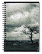 Disdain Spiral Notebook