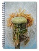 Disheveled Spiral Notebook