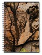 Disillusion  Spiral Notebook