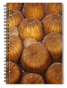 Macro Abstract Of Coral Spiral Notebook