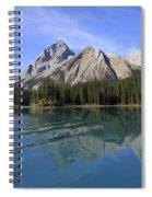 Distorted Spiral Notebook