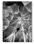 Ditch Lace Bw Spiral Notebook