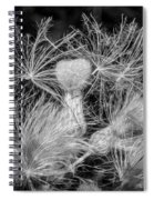 Ditch Party 2 Bw Spiral Notebook