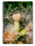 Ditch Party 2 Spiral Notebook