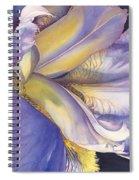 Diva Divine Spiral Notebook