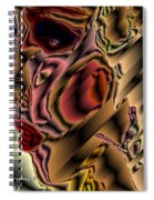 Diva Of The Sixth Dimension Spiral Notebook