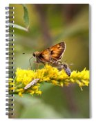 Diversity - Insects Spiral Notebook