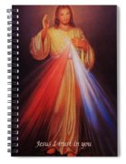 Divine Mercy Big File Spiral Notebook