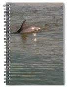 Diving Dolphin Spiral Notebook