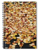 Dizzy Db Spiral Notebook